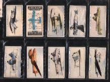 Tobacco Cigarette cards Aircraft 1938 set of 54